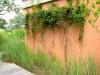 Jager_landscape architecture_kiawah island_custom wire vine trellis