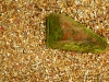Livingston_moss stone in plantation mix gravel path