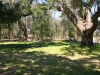 Mepkin Abbey - live oak exising site