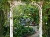 Cole_ Charleston style garden