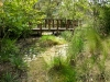 gregory _ rock swale with native grasses and custom wooden bridge.jpg
