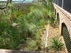 gregory_ gravel trough along marsh with native grasses.jpg
