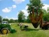 Planting-live-oak-allee
