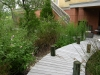 Jager_landscape architecture_kiawah island_board walk through native grasses and plants