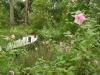 Jager_landscape architecture_kiawah island_boardwalk through native plant garden
