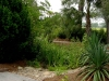 Jager_landscape architecture_kiawah island_rock swale with native plants and custom hardscape