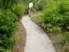 Jager_landscape architecture_kiawah island_shell sand path with steel border through native plant garden