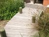Jager_landscape architecture_kiawah island_wood pedestrian bridge through native plant garden