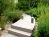 Jager_landscape architecture_kiawah island_wooden bridge over swale with native grasses and plants
