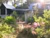 Lindsay _ backlit house and native grasses.jpg