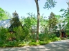 Lindsay _ native plant entry garden.jpg