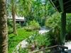 Lindsay _courtyard garden.jpg