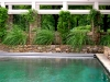paris mountain_greenville_south carolina_pool with arbor and stone retaining wall_native grasses and vines