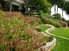 paris mountain_greenville_south carolina_stone terrace garden with sea oats and native grasses