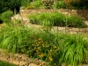 paris mountain_greenville_south carolina_terrace garden plantbeds with native grasses and native plants