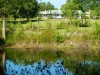 Willingham Plantation_Allendale South Carolina_landscape architecture_master plan_farm house from pond.jpg