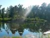 Willingham Plantation_Allendale South Carolina_landscape architecture_master plan_pond.jpg